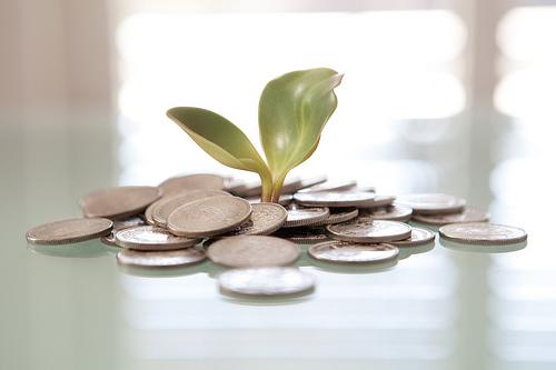 A szabad felhasználású hitel bármire elkölthető