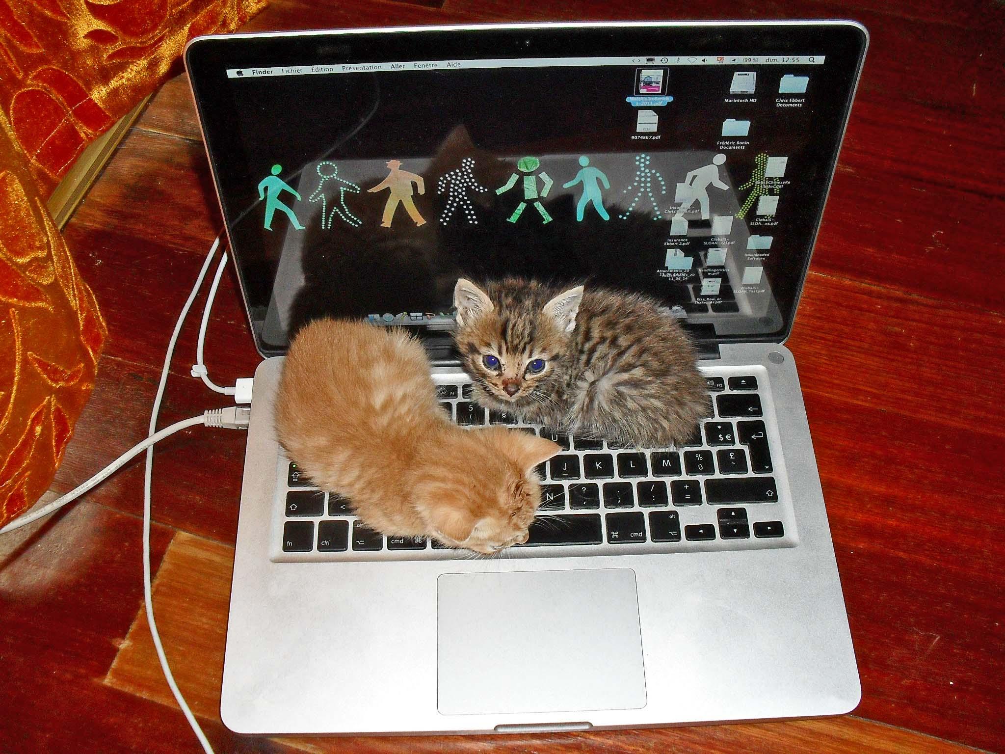 Tartós laptop akkuk vásárlása