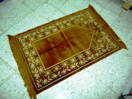 Háziállatok mellett a szőnyegtisztítás otthon nem javasolt
