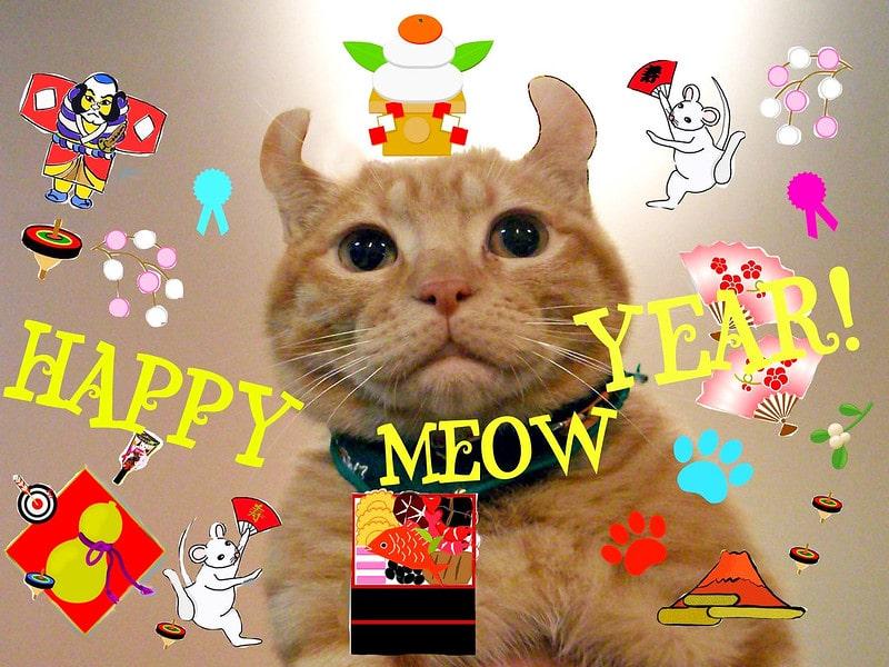 vicces újévi köszöntők